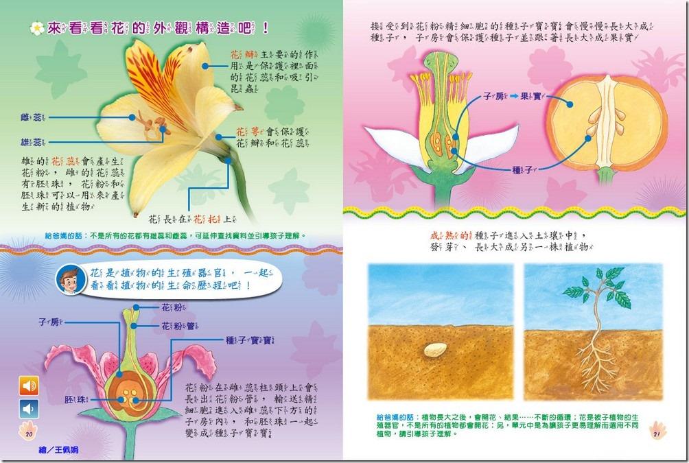 304-20-21 全國兒童樂園 (小飛蛙月刊) no.304 期 出刊囉