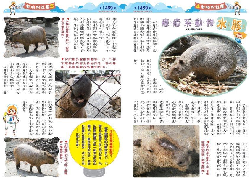 Kid_storybook000206121058
