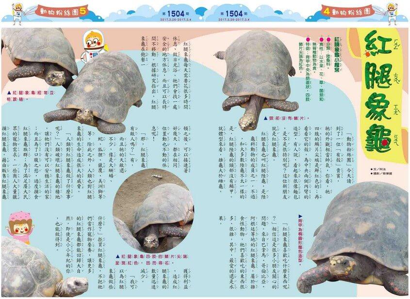kid story book weekly1504 04 05 -news- 全國兒童週刊1504期出刊囉!